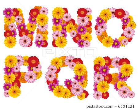 花卉首都,字母,鮮花,英文, 6501121