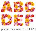 字母 花朵 花卉 6501123