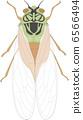 矢量 昆蟲 蟲子 6566494