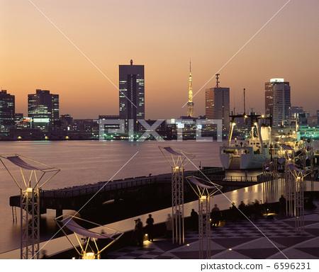 Tokyo Tower 6596231