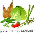 蔬菜套的春天 6696001