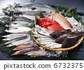 新鲜的鱼 鱼 针鱼 6732375