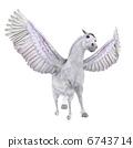 飞马 6743714