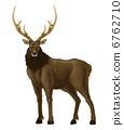 鹿的鹿 6762710