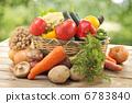 蔬菜 院子 胡蘿蔔 6783840