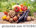 蔬菜 花園 檸檬 6783842