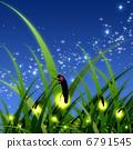 firefly, lightning, bug 6791545