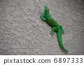 蜥蜴 爬行動物 蠑螈 6897333