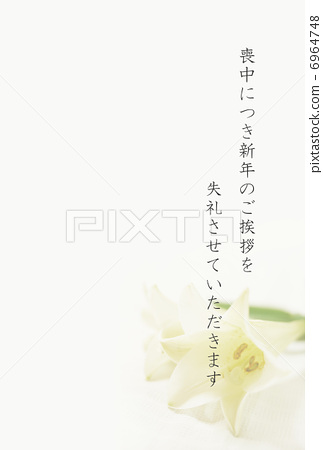 Lily mourning postcard 6964748