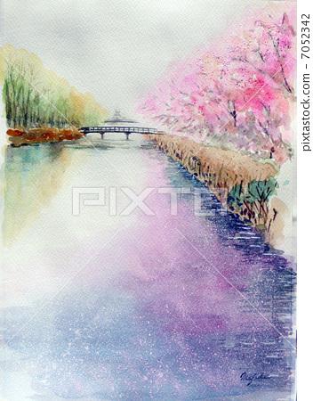 Sakura's tunnel sketch picture Kaizu Ohashi Takashima-shi cherry blossom viewing 100 selections 7052342