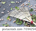 The fruit of a ginkgo that fell on the sidewalk 7094254