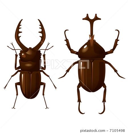 鋸齒狀的鹿角甲蟲 牙買加犀金龜 鍬形蟲 7105498