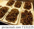 昆虫 虫子 漏洞 7131225