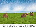 plain, dairy, dairyman 7191057