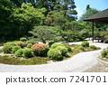 สวน,สไตล์ญี่ปุ่น,วัด 7241701