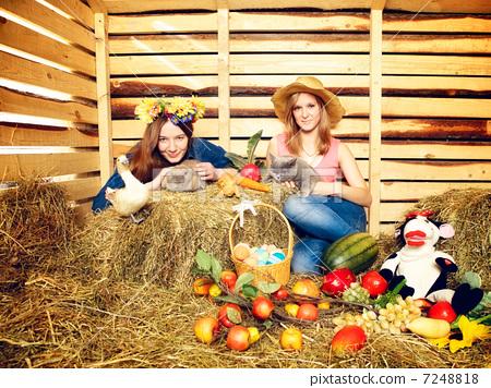 Harvest Home 7248818