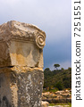 Ancient Ruins Detail 7251551