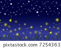 firefly, lightning, bug 7254363