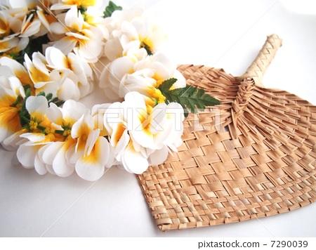Hula / Floweray 7290039
