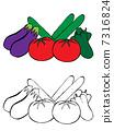 Summer vegetable 7316824