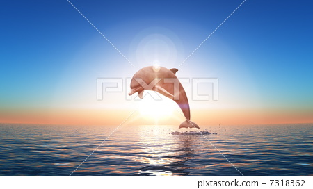 Dolphin 7318362