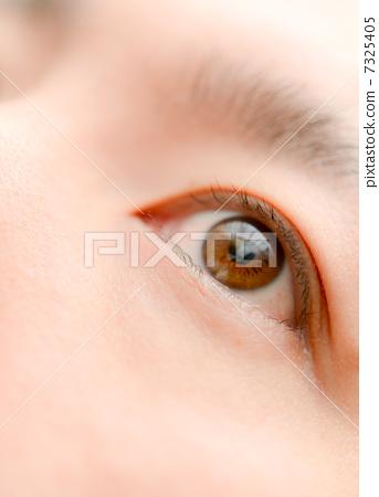 美麗的眼睛 7325405