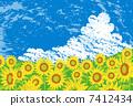 Sunflower field 7412434