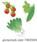 Vegetable set 7443964