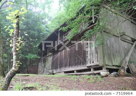 Deserted house 7519964