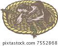 shiitake mushroom, mushroom, foodstuff 7552868