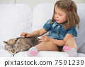 cat, pet, child 7591239