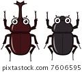 甲蟲 7606595