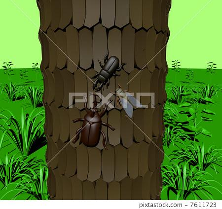 숲의 곤충 (3) 7611723