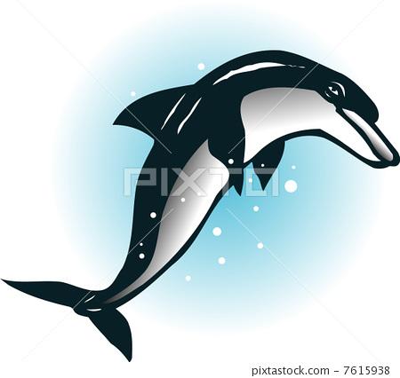 Dolphin 7615938