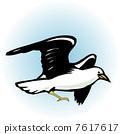 Seagull 7617617