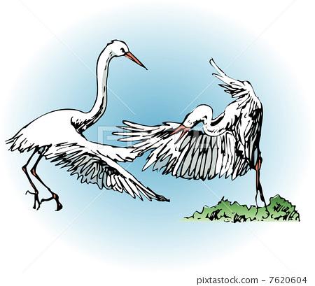 Swan 7620604