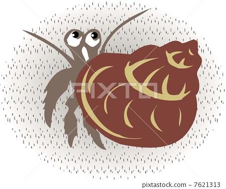 Hermit crab 7621313