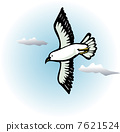 Seagull 7621524