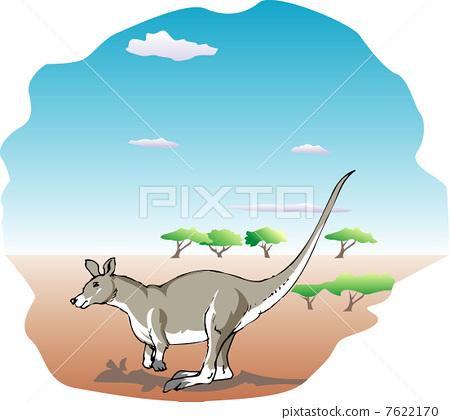Kangaroo 7622170