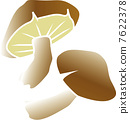 lentinula, shiitake mushroom, shiitake 7622378