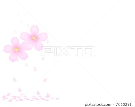 櫻花 7650251