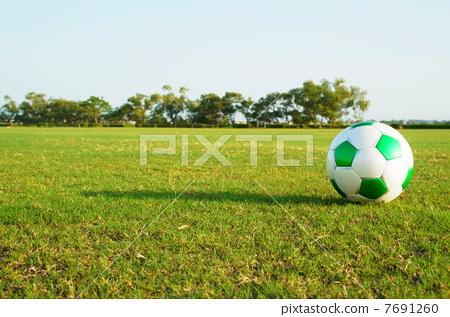 soccer ball 7691260