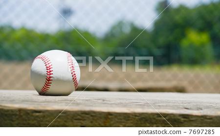 야구 공 한 개 7697285