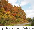 Autumn Echigo Yuzawa 04 7742964