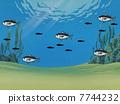ภูมิทัศน์ใต้น้ำ 7744232