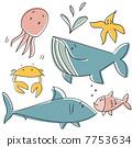 鲨鱼 鲸鱼 海蜇 7753634