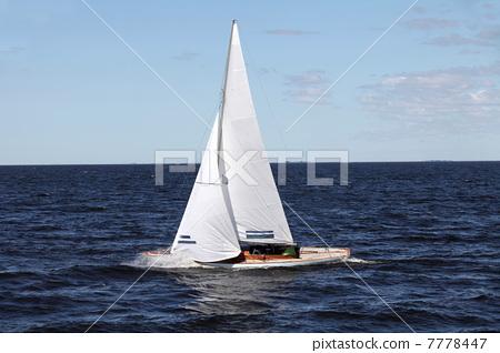 sailing race 7778447