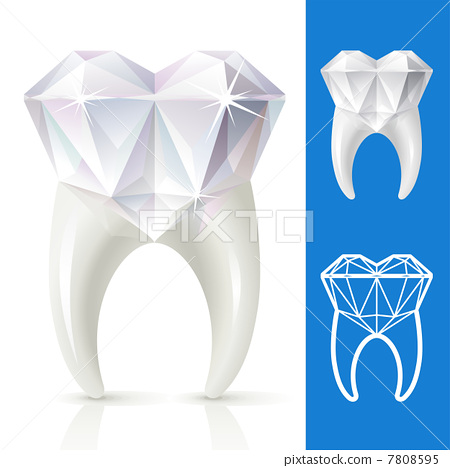 Teeth strong, as diamond 7808595