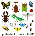 昆虫 7834985