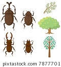 昆蟲和樹木 7877701